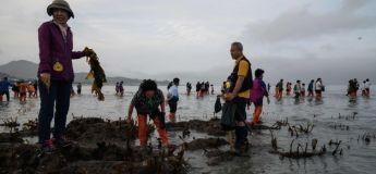 Corée du Sud : le Maire a fait déverser une tonne de déchets sur la plage pour que les écologistes aient quelque chose à ramasser