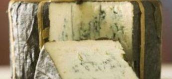 Le meilleur fromage au monde 2019 ne vient pas de France, mais… des Etats-Unis !