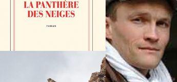 Obtenez à un prix moins cher le Renaudot 2019 «La Panthère des Neiges»
