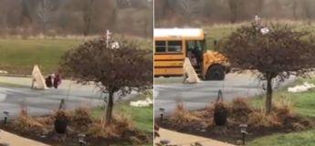 Ce chien accompagne cette petite fille chaque jour à l'arrêt de bus