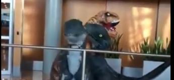 Les retrouvailles émouvantes en vidéo d'une grand-mère et de ses 2 petits fils déguisés en dinosaures dans un aéroport