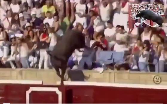 Ce taureau furieux passe au-dessus de la barrière et s'attaque au public