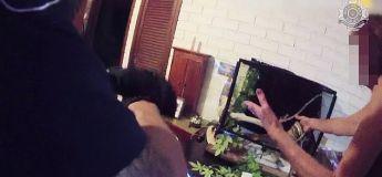 Une femme obligée d'appeler la police après que son « gentil » python domestique ait refusé de lâcher sa main