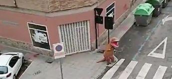 Coronavirus : un homme sort dans la rue déguisé en dinosaure en plein confinement