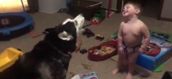 Ce bébé parle avec un husky, et c'est tellement mignon !