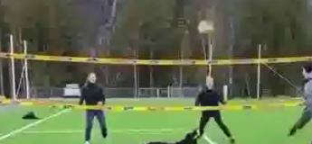 Ce chien est un excellent joueur de volley-ball, surement meilleur que la plupart d'entre vous