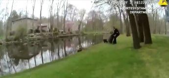 Des policiers courent après un cochon en fuite qui les met en difficulté dans cette vidéo amusante