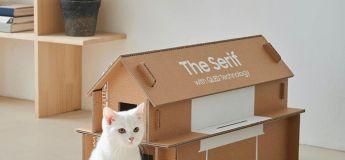 Une boite de TV Samsung peut se décliner en maison pour chats et il y a même un concours du meilleur objet recyclé !