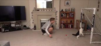 Il a voulu défier son chat gardien de but mais celui-ci ne lui a laissé aucune chance de marquer