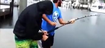 Ils pêchent un poisson gigantesque dans la marina