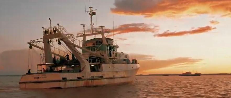 A la recherche de L'Or Rose, la crevette sauvage de Madagascar
