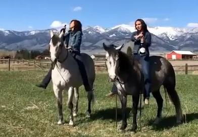 Conseil du jour : ne pas déboucher le champagne sur des chevaux