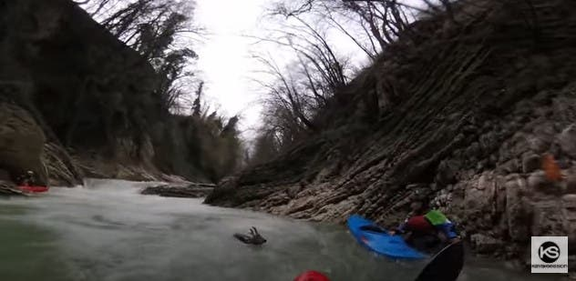Italie : des kayakistes sauvent une jeune biche de la noyade