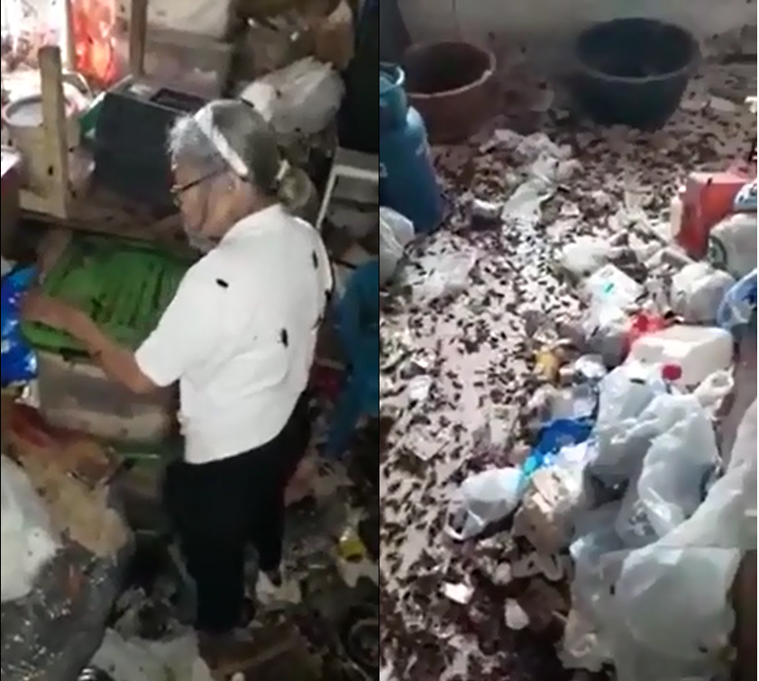 La pire infestation de cafards que vous aurez vue de toute votre vie !