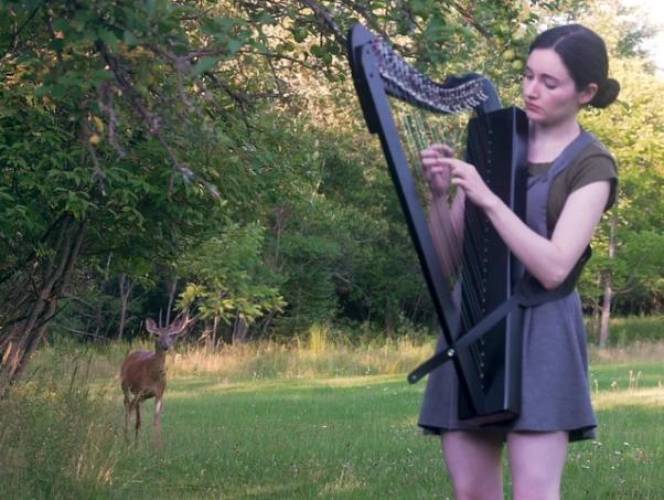 Cette musicienne attire un cerf en jouant avec sa harpe dans la forêt