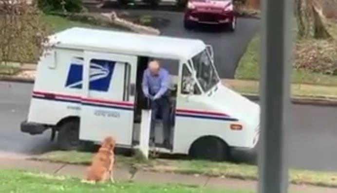 Une relation touchante entre un chien et le facteur