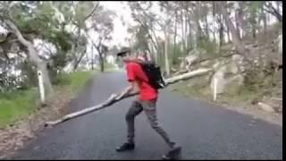 Cet homme se heurte la tête avec le bois qu'il a lancé
