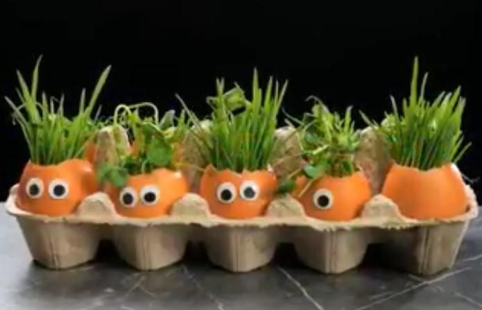 Comment jardiner dans un petit appartement