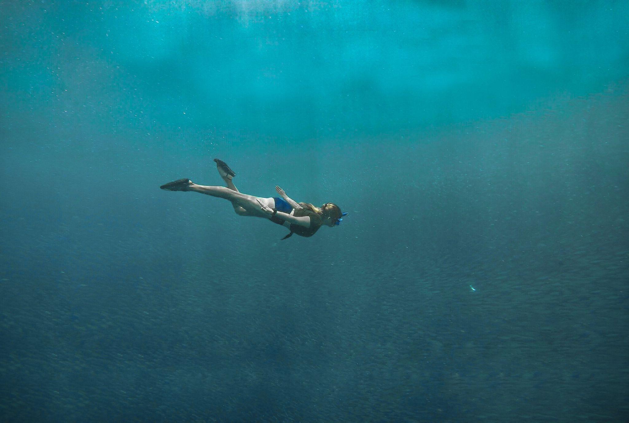 La panique pour ce plongeur qui voit passer au-dessus de lui un sous-marin !