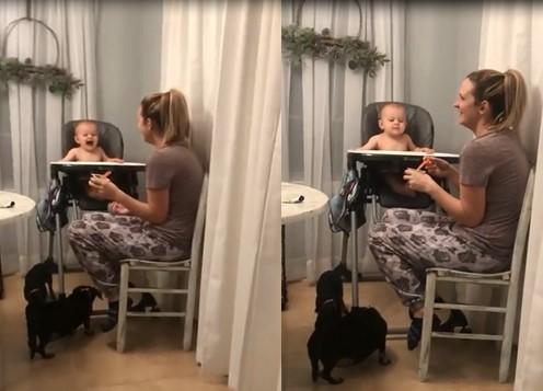 Ce bébé éclate de rire devant sa maman qui fait semblant d'éternuer
