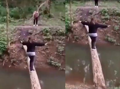 elle tombe dans l'eau après avoir réussi à traverser le cours d'eau en passant par un tronc d'arbre