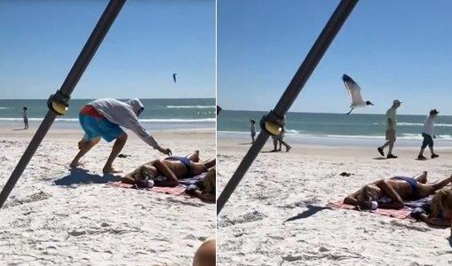 Un homme s'amuse à attirer les oiseaux sur une femme qui profitait du soleil et de la plage