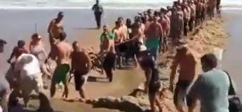 Un requin a échoué sur la plage, toute la foule s'est mobilisée pour le remettre à la mer