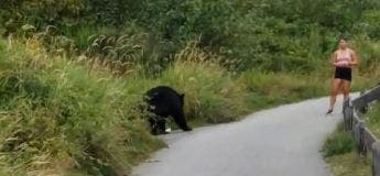 Cette joggeuse s'est arrêtée pour interagir avec un ours noir, chose tout à fait normal au Canada et en Russie