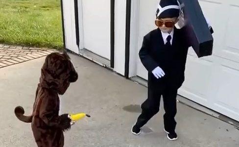 Cet enfant s'est déguisé en Coffin Dance pour Halloween, et c'est très réussi !