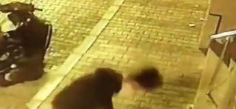 Un homme surpris par cette caméra de sécurité s'amusant à caresser un chat errant.