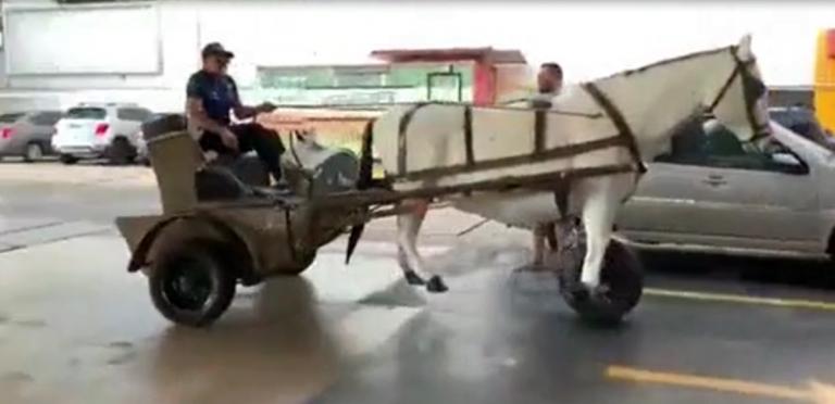 Cette automobile avec une forme hors du commun et tirée par un cheval est-elle la voiture du futur ?