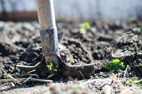 Comment réussir un jardin bio ?