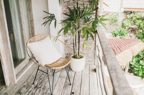 Quelles plantes pour mon balcon ?